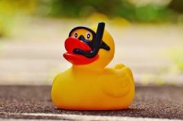rubber-duck-1361280_1920